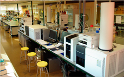 Center of Metabolomics and Bioanalysis (CEMBIO)